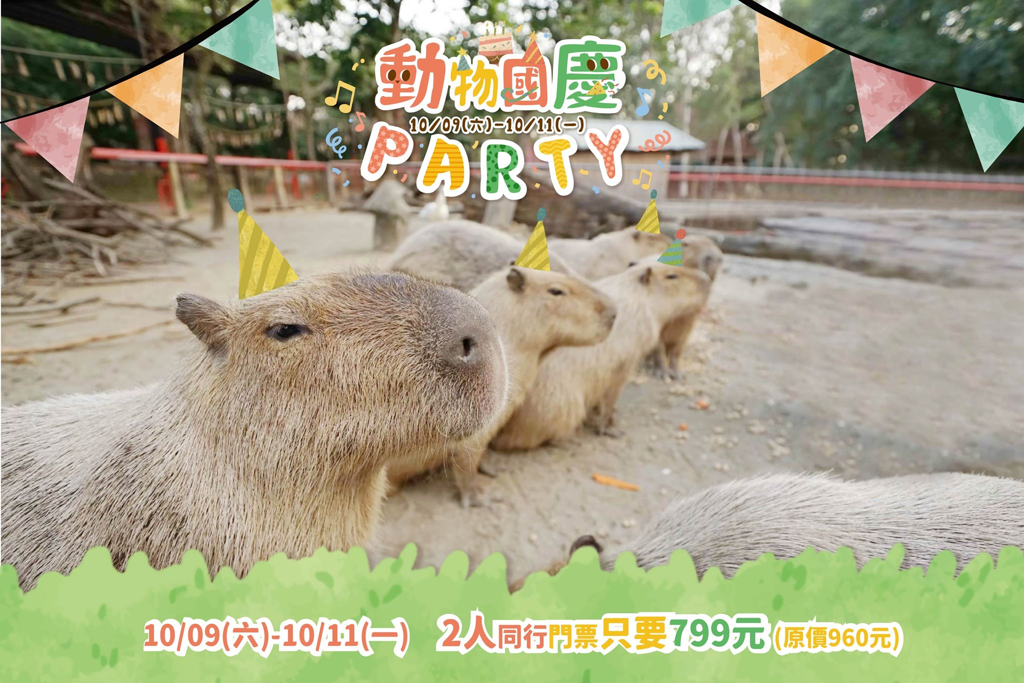 You are currently viewing 🎉動物國慶派對🎉